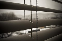 window to the soul (joespix) Tags: window matthew overcast blinds dust 622