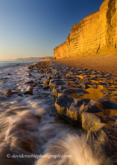 Burton Bradstock, Dorset - Low Tide (David Crosbie) Tags: winter beach water landscape landscapes dorset lowtide geology sandstonecliffs bridport westbay swcp burtonbradstock jurassiccoast southwestcoastpath watermovement hivebeach superaplus aplusphoto rockledges