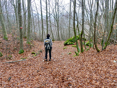 Escursionismo Sibillini - Monte Patino