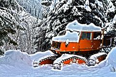 Snowcat_2_HDR2