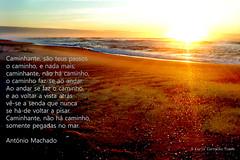 Happy New Year (Carla Carvalho Tomas) Tags: ocean light sunset pordosol sea luz praia beach hope mar esperana paths bliss caminhos happynewyear cairdodia carlacarvalhotoms