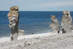Gotland 2010