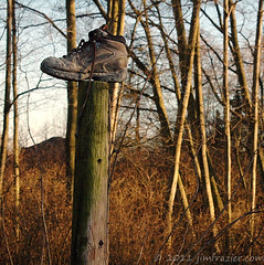 It's the old shoe-on-the-fencepost trick (Jim Frazier) Tags: 2005 seattle old trip travel trees winter light vacation orange detail art abandoned field lines mystery rural forest fence woodland boot shoe evening amber countryside washington woods nikon d70 dusk country birding beautifullight sunsets study fieldtrip forgotten mysterious wa traveling february magichour q3 goldenhour fencepost woodlot skagitflats sidelight hikingboot birdwalk verticallines interestinglight capturenx nikoncapturenx ldjanuary jimfraziercom ld2011 050224c