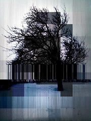 Digital tree (Anders Uddeskog) Tags: cameraphone iris tree art texture nature mobile espoo finland phone sweden cellphone mobilephone photostudio pixels malm iphone photofx phoneography iphoneart iphoneography iphone3gs blurfx decim8