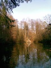 Fotowettbewerb (ForstbetriebWinterthur) Tags: heinz januar huser