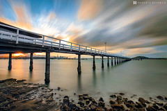 The sounds of the wind or sounds of the sea always makes me happy. (Danskie.Dijamco.Photography) Tags: ocean longexposure sunset sea newzealand summer beach water nikon auckland nd 1635mm orakei okahubay nd110 allxpressus bwnd110 nikon1635mmf4