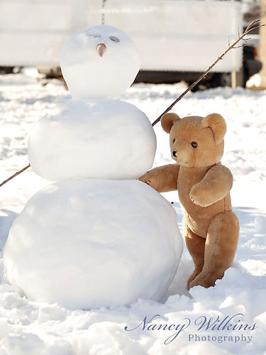 Teddy and the snowman