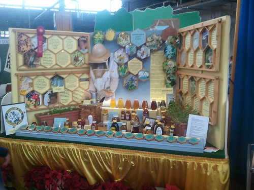 Honey Bee Display