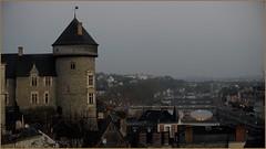 2011-01-181 (yvonphotographie) Tags: de chateau 53 laval mayenne