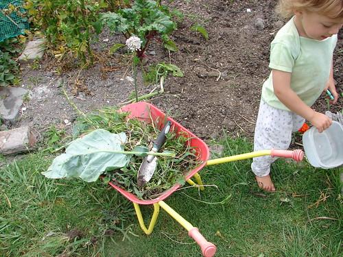 dec garden