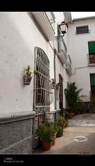 Lubrín, rincones con encanto (scarabaeus sacer) Tags: pueblo 9 rincones urbana almería 2011 lubrín nikond300 jatm64