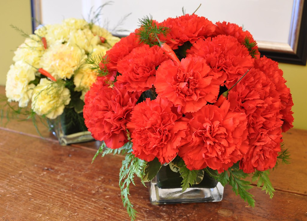 Carnations - The National Flower of Spain
