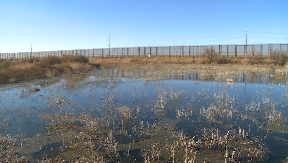 Wetlands at the US-Mexico Wall