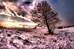 (mdoors) Tags: schnee light sunset snow silhouette licht frost feld wolken fisheye 8mm sonne sonnenaufgang brandenburg daybreak hrd beelitz eos7d einzellbaum