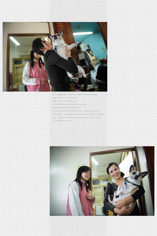 20101113book22