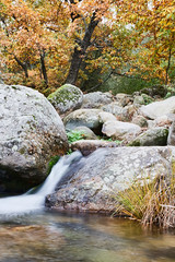 valle_ambroz (Franc BS) Tags: trees fall nature leaves rio automne river landscape hojas waterfall arboles wasserfall herbst paisaje rivire arbres otoo fluss landschaft bltter bume paysages feuilles cascada chutedeau extremadura ambroz