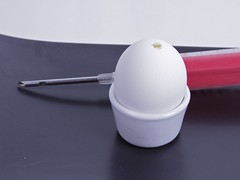 Egg with syringe
