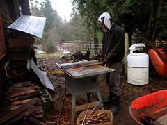 Brad cutting cedar shakes