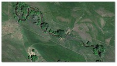 Meandering map and cows (Rocky Pix) Tags: road winter mountain west plane google colorado pix december ditch flood crane longmont maps w rocky nelson pasture farms michel hollow irrigation agricultural cottonwoods meandering rockypix kiteley