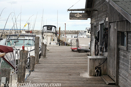 Carlson's Fisheries