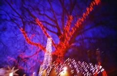 Untitled-7 (nicnocnoo) Tags: park christmas xmas winter film 35mm lomo lca lomography hyde winterwonderland lomo800 lgsworkshops