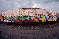 DOOK  KNISTT (TRUE 2 DEATH) Tags: street railroad autostitch panorama streetart art train graffiti la pano graf traintracks trains zee panoramic railcar spraypaint z boxcar zombies railways stitched railfan freight reefer dook freighttrain autostitched rollingstock armn endtoend fgs autopano  knistt stitchedpanorama e2e autopanopro benching freighttraingraffiti gtlrs knistto