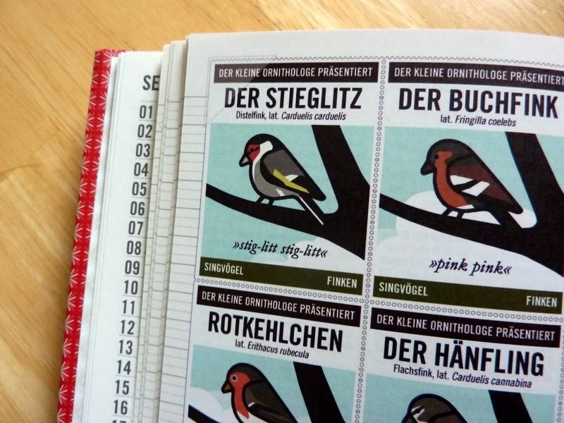Foto von der Seite mit den Singvögeln im Lily Lux Notizbuch