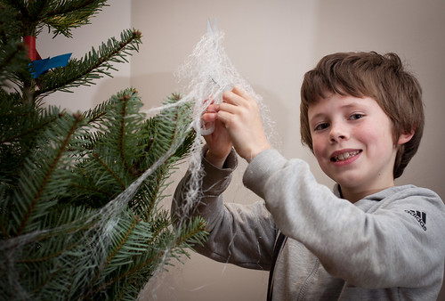 Unwrapping the tree