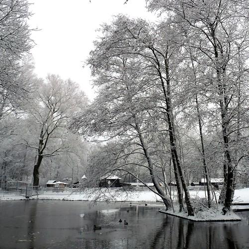 Dragonderpark Veenendaal 2