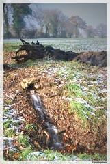 A la source #1 (JDutheil-Photography) Tags: st photoshop nikon cs2 le nikkor grip 53 1870mm mayenne d60 cyr photofiltre 53320 phottix jojothepotato gravelais