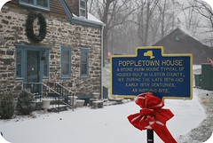 Poppytown House