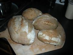 Sourdough bread - bread making machines