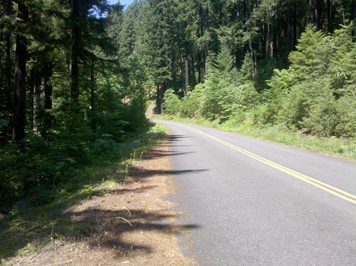 Aufderheide Memorial Drive National Forest Development Road 19