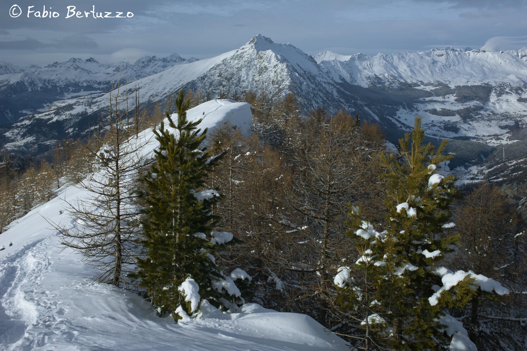 Monte Zerbion da Testa di Comagna