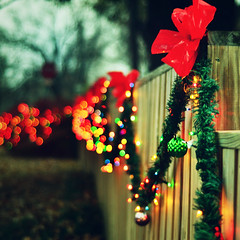 All lit up. {Explored - Front Page} (eRachel11) Tags: light holiday fence nikon bokeh fences fencing friday multicolored d7000 nikond7000 happyfencefriday oklahomachristmastrip