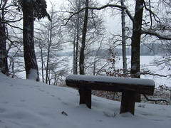 Bench along a lake (fsteffenhagen) Tags: winter lake snow forest bench uckermark 2010 templin