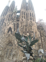Sagrada Famlia (8) (raymond chenon) Tags: barcelona church architecture spain architect espagne barcelone sagradafamlia antonigaud eixample
