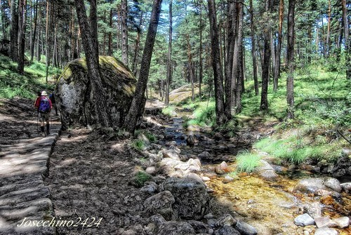 Senderismo en Navacerrada