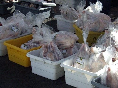Thanksgiving turkeys waiting for pickup