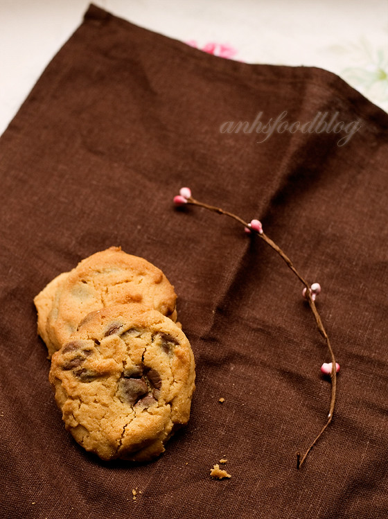 [Best ever!] Peanut butter and chocolate cookies