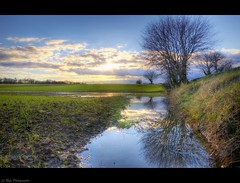 Sunset reflex (Le***Refs *PHOTOGRAPHIE*) Tags: light sunset sky reflection tree nature water colors clouds landscape nikon pluie explore reflet paysage frontpage arbre ales hdr champ gard boue d90 lerefs