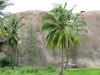 20090727_G9_IMG_2929 (Gogolcat) Tags: india climbing ramanagaram