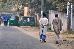 [204/365]: Sharing Stories (A. adnan) Tags: street old winter friends walking sticks elderly bangladesh chittagong bangladeshiphotographer peopleofbangladesh