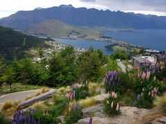 Queenstown, NZ (C) 2010