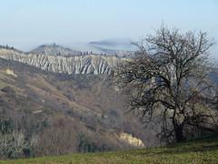 P1000291 (gzammarchi) Tags: italia natura campagna nebbia albero paesaggio collina camminata itinerario calanco fiagnano casalfiumanesebo