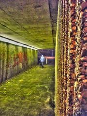 Subway 2 (Esmik D'Aguiar) Tags: road lighting street nottingham uk light england urban dog streetart architecture subway graffiti streetlight europe fuji nocturnal walk arnold bracket urbanart finepix hdr nottinghamshire woodthorpe tonemap oloneo