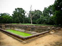 Бассейн в Анурадхапуре