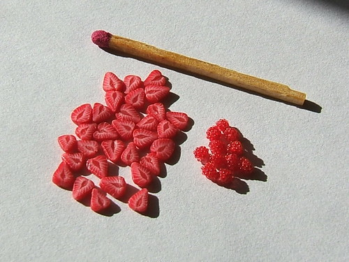 strawberry slices and raspberries