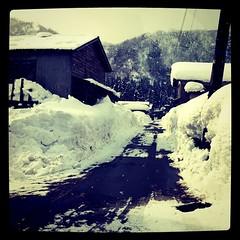 それなりに豪雪地域なんだなぁと、再認識。