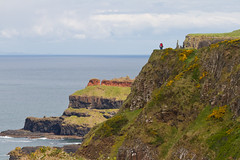 View from Giant's Causeway Cliffside Trail